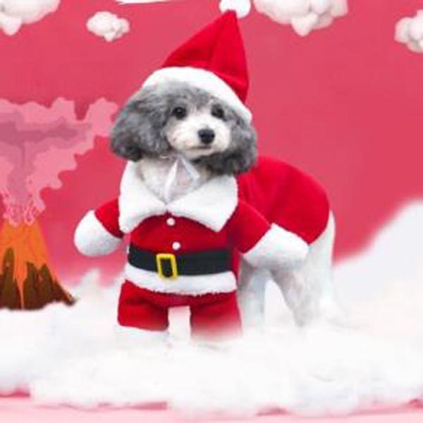 pets Christmas set