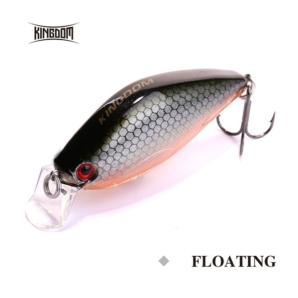 Kingdom New Arrival Fishing Hard Lure 55mm 8.6g Floating Minnow Inside Hologram Cast Bait Plastic Lip Model 5324 Y18100906