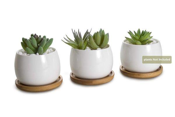 eramic White Collection Sukkulenten Topf / Kaktus Blumentopf Blumentopf / Container