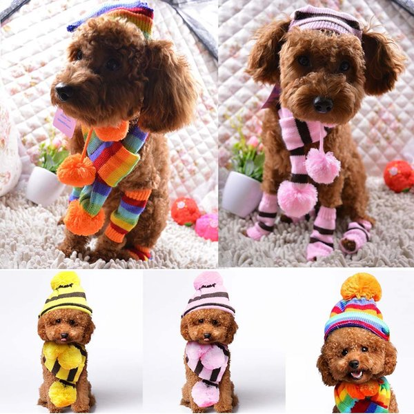 New Dog Pet Puppy Hat Cat Cape Scarf Leg Warmer 6pc/Set for Petalk Teddy Chihuahua Small Pet 3 Color