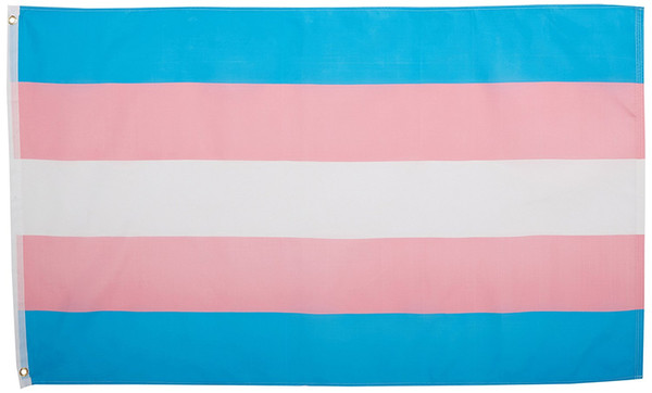 best selling free shipping factory direct supply 100% polyester 90*150cm LGBT pride translocality trans transgender Flag For Decoration