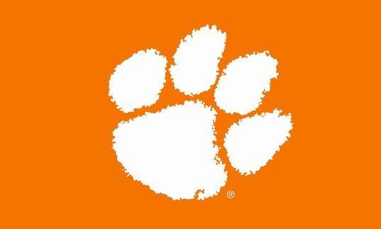 Sfondo arancione con bandiera pawed power power, 90 * 150 cm, 100% poliestere, banner, stampa digitale