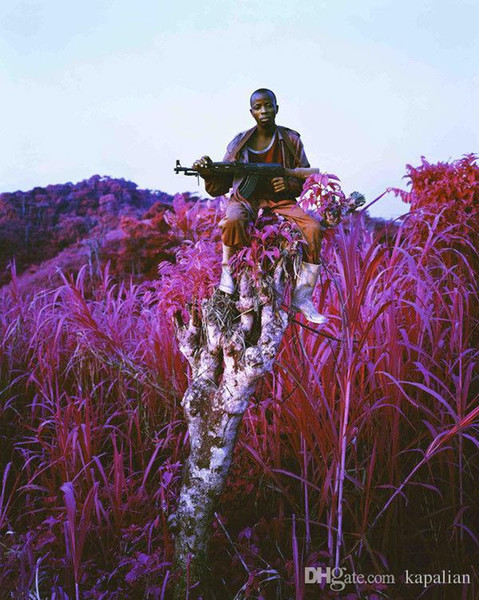 top popular Free Shipping Richard Mosse Infra Higher Ground Art Print Poster 24x36 Art Posters Prints Home Decor Wall Paper 16 24 36 47 inches 2019