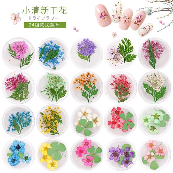 6 pots fresh nails natural dried flowers for uv gel nail art uv gel tips decoration nail supplies tool
