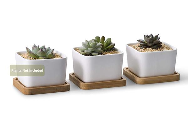 Weißer keramischer zeitgenössischer quadratischer Entwurfs-saftiger Blumentopf / Kaktus-Blumentopf mit Bambusbehälter