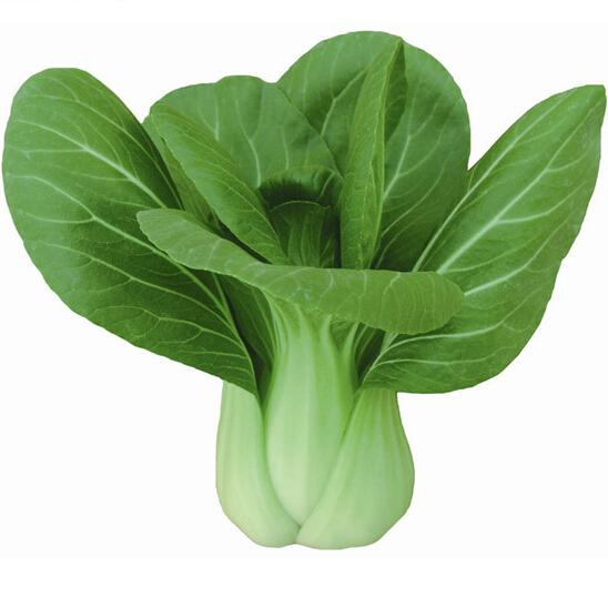 Chinese Cabbage Seeds, Easy To Grow vegetable seed 200 particles/bag