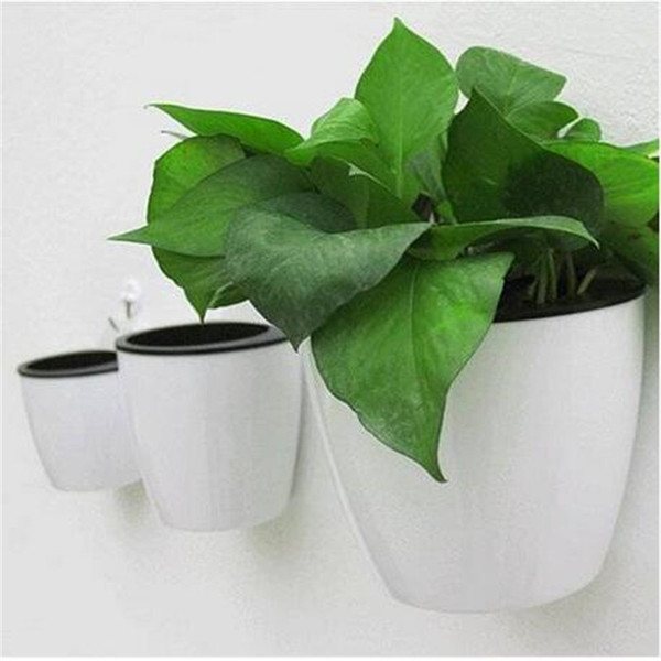 Free shipping Wall Hanging Flower Pot Round Hydroponics Chlorophytum Potted Flower Pots Planters & Pots