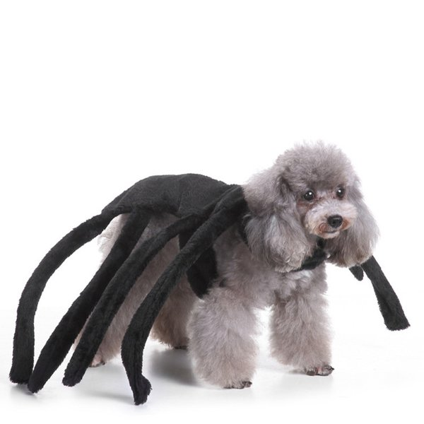 New Halloween Party Dog Clothes Spider Cosplay Funny Pumpkin Sweatshirt Pet Costume For Dog Cat Play Dressing Up Roupa Cachorro