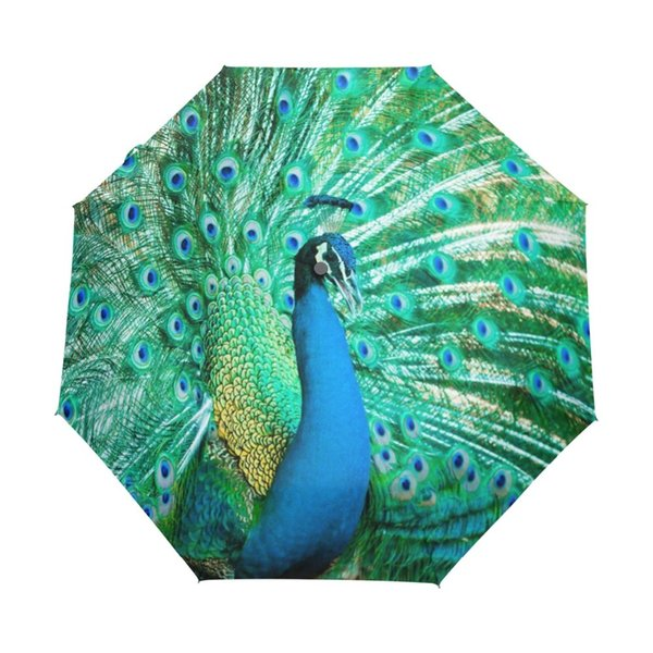 Peacock Exotic Birds Windproof Anti UV Umbrellas Auto Open Close 3 Folding Durable Compact Travel Sun Rain Umbrella for Children