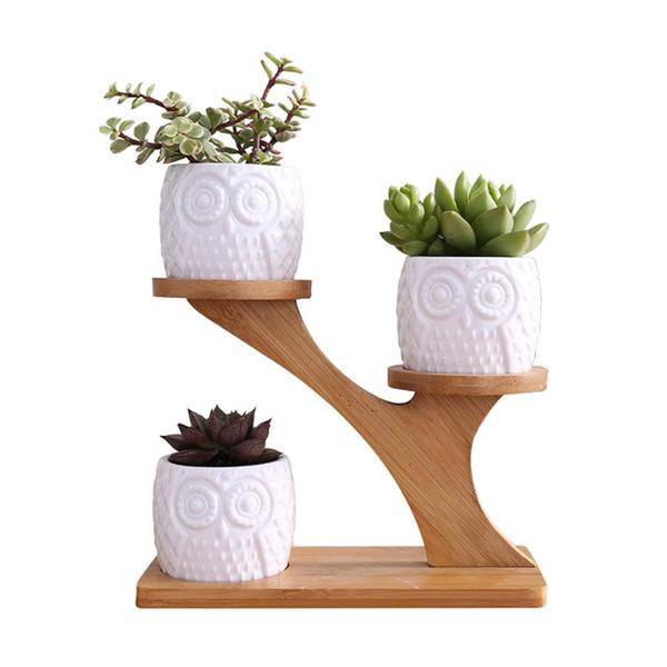 Macetas de cerámica suculentas de búho con bandeja de bambú