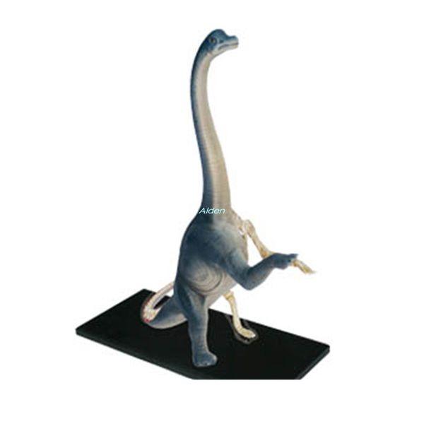 KAWS 4D Master Jason Freeny Internal Anatomy Brachiosaurus Transparent Skeleton Birthday Gift PVC Action Collectible Model Toy 27CM BOX G347