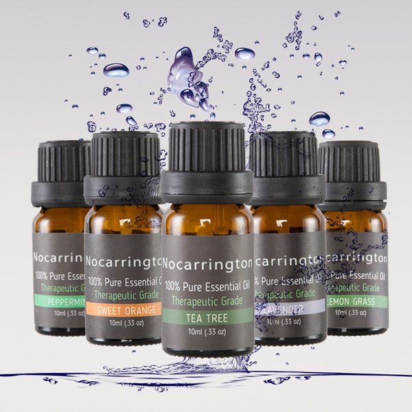 2019 Nocarrington Beleza Aromaterapia Top 6 Óleo Essencial 100% Pura Grau Terapêutico-Kit Básico Sampler Presente Set