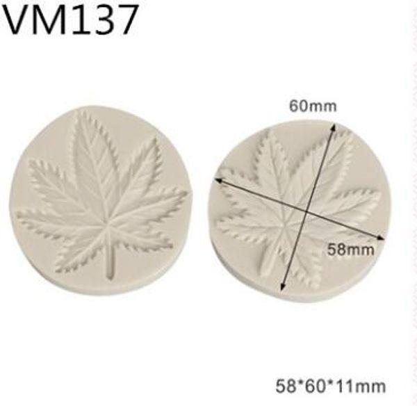 vm137