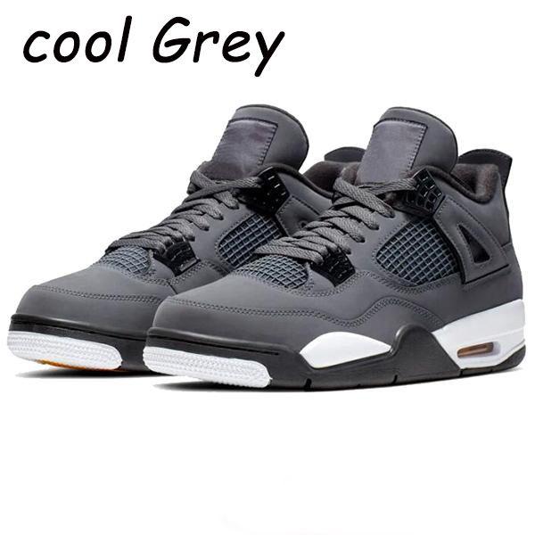 gris frío