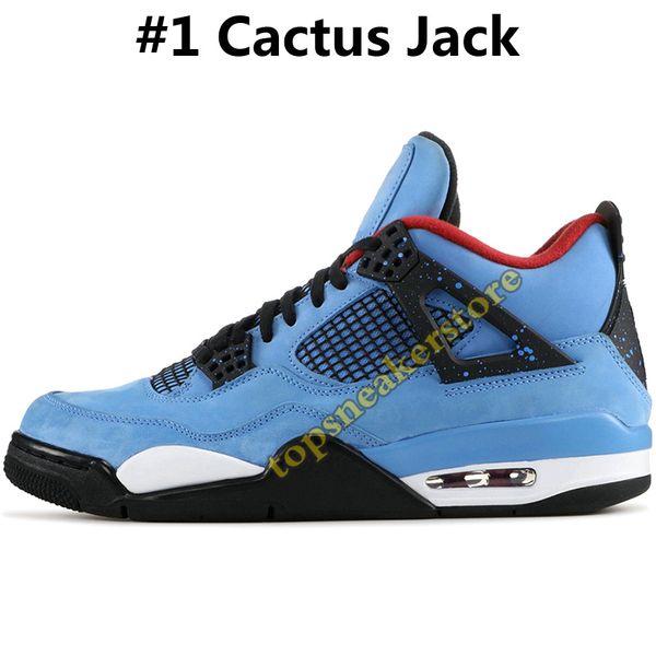# 1 Kaktüs Jack