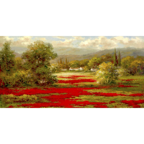 Art Gift beautiful landscapes oil paintings Poppy Village hand-painted bedroom decor