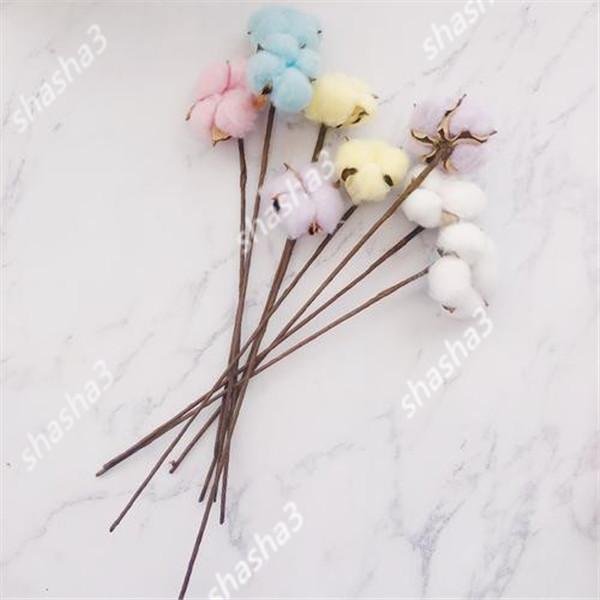 10 adet nadir bonsai çin pamuk beyaz Gossypium Yüksek verim çiftlik tekstil sanayi bitkileri homegarden dikim için büyümek kolay