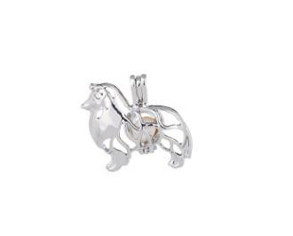 Charm Locket Cage Pendant Jewelry for Women Various Style Choose Crystal Locket Pendant Designer Necklace Time Limited