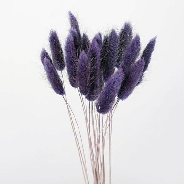 gris púrpura