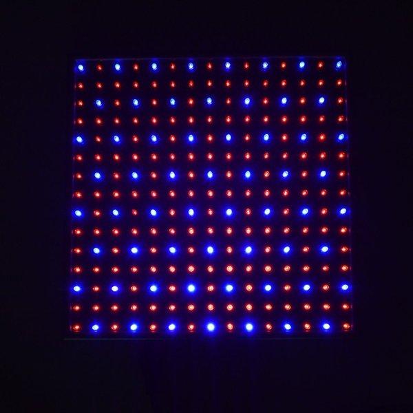 Renk Yayan: Kırmızı mavi ışık