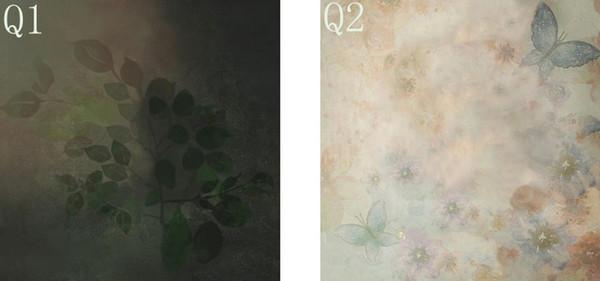 Q1 Q2