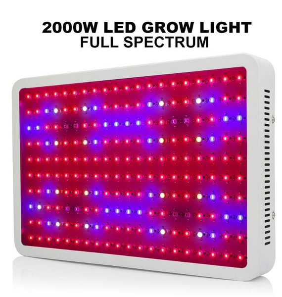 Bloomveg 2020 China S New Generation Of Led Planting Lights 1000 2000w Full Spectrum Led Plant Lights Indoor Planting Growth Lights 300 Watt Led Grow