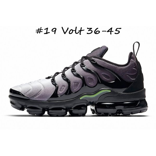 #19 Volt 36-45