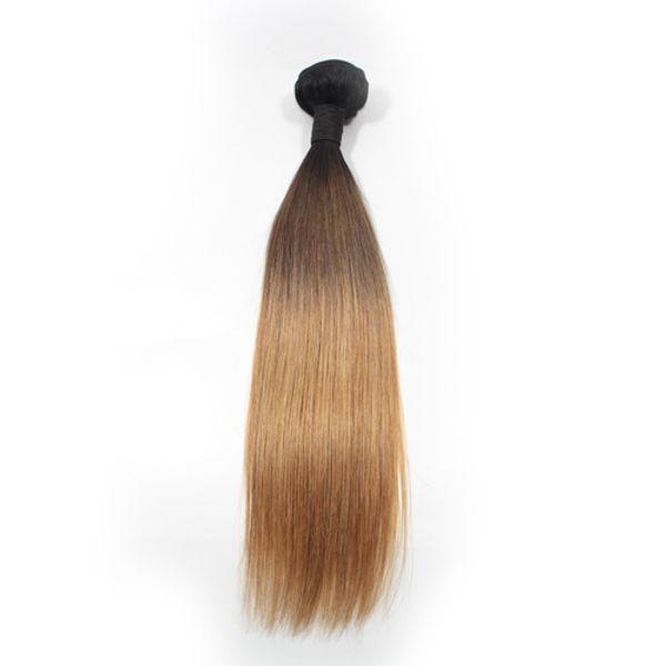 1В/4/27 Ombre волос