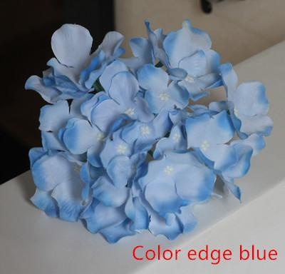 21 color edge blue