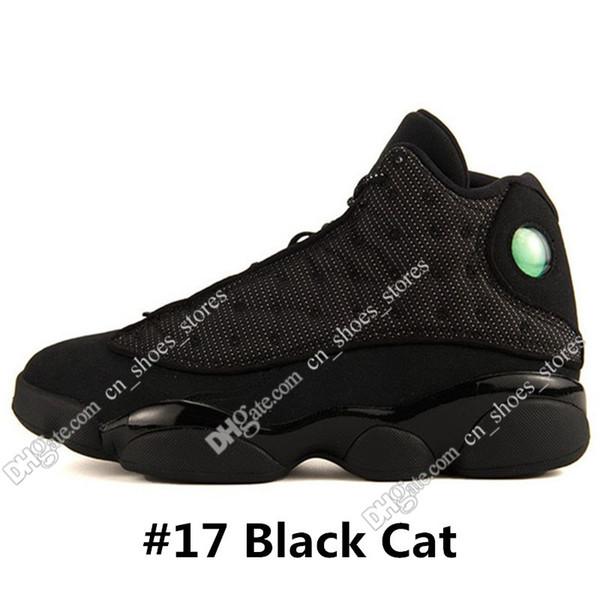 # 17 chat noir