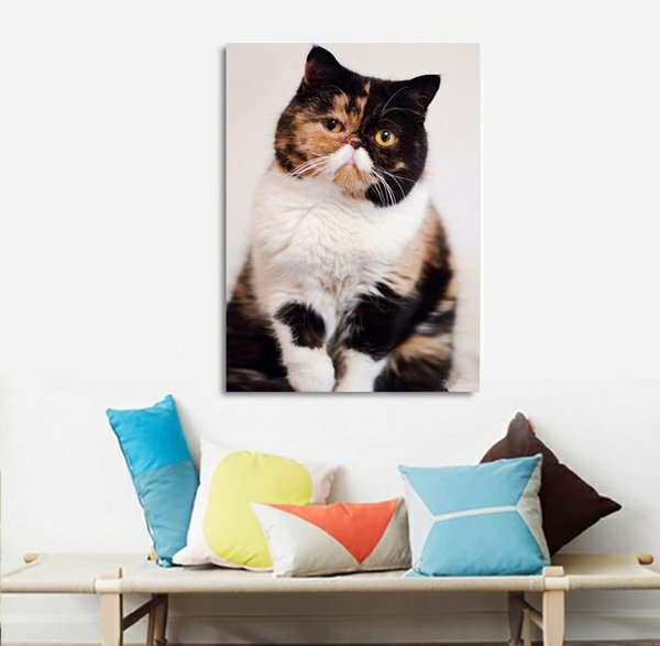 5D DIY Animal Cat Cute Full of Diamond Painting Cross Stitch Kits Over Drilling Home Decoration Without Frame