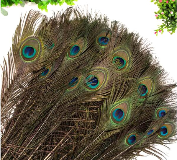 Peacock Feathers 120-140CM Natural Peacock Tail Feathers for Party Wedding decoration Handcraft Feathers