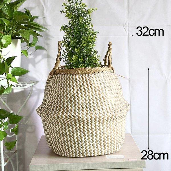 Bianco-L Size