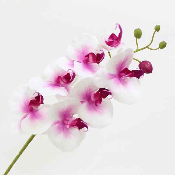 Noyau rose