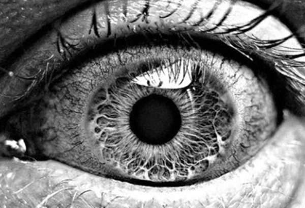 Black & White View of the Human Eye Art Silk Print Poster 24x36inch(60x90cm) 088