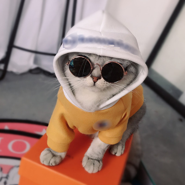 New Arrive Pet Dog Hoodies Clothes Fleece Sweatshirt For Small Dogs Casual Puppy Cat Costumes French Bulldog Bichon Clothing