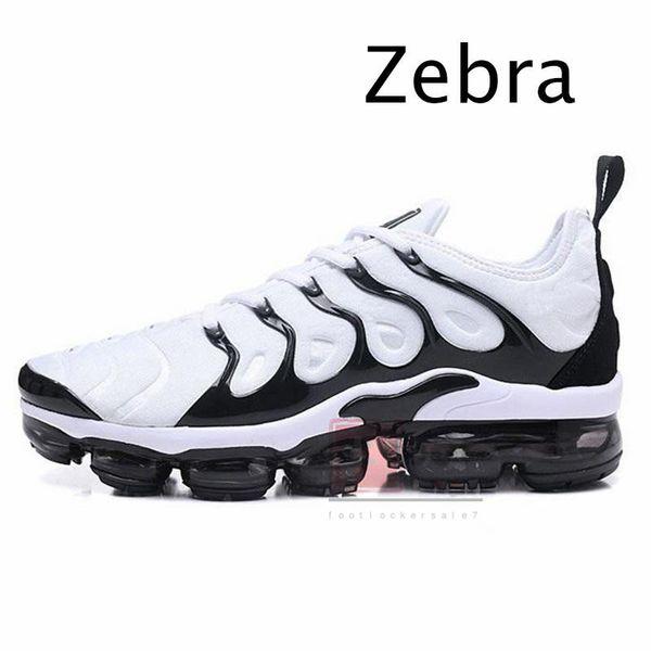 30.Zebra