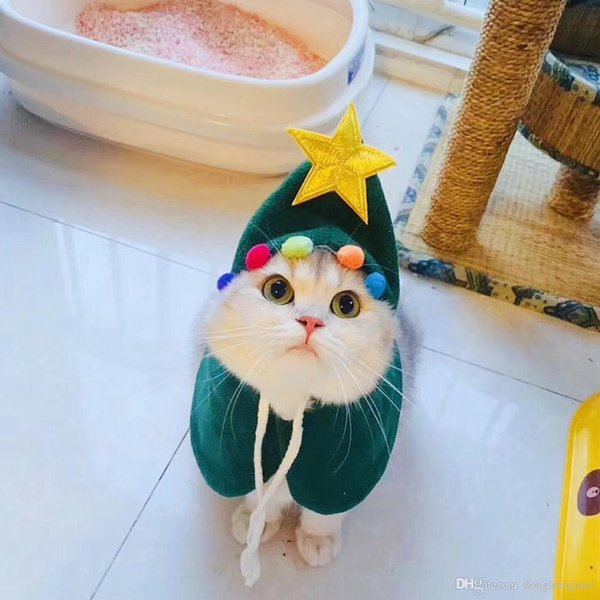 Image result for santa cat with elf""