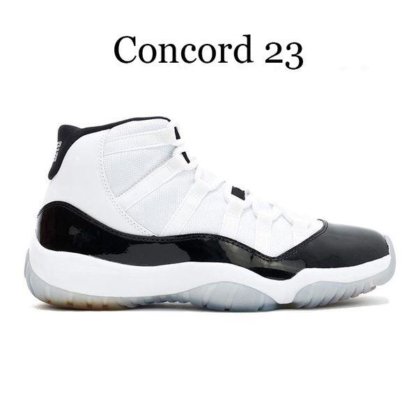 كونكورد 23