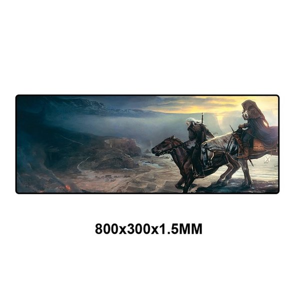 WS-005-80x30