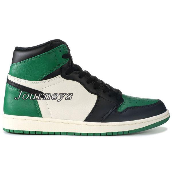 #18 Pine Green