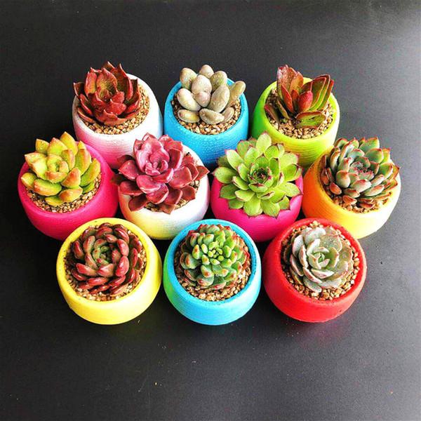 Cute Mini Round Plastic Succulent Plant Flower Pot Garden Home Office Desktop Decor Micro Landscape Planter Unbreakable Flowerpot