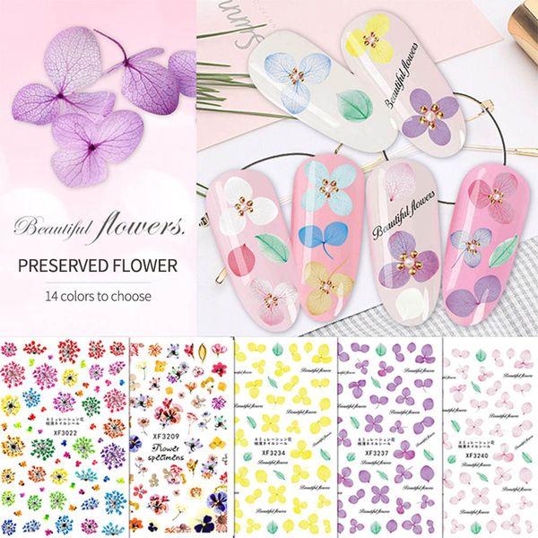 Imitation Dried Flower Nail Sticker Eternal Flower Daffodil Hydrangea DIY Nail Decoration WH998