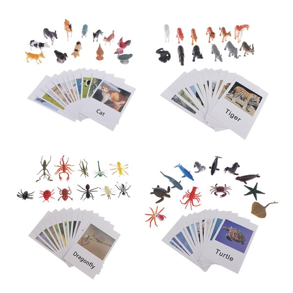 top popular 48pc Education Insects Animals Model Card Toy Kids Children Matching Card 2020