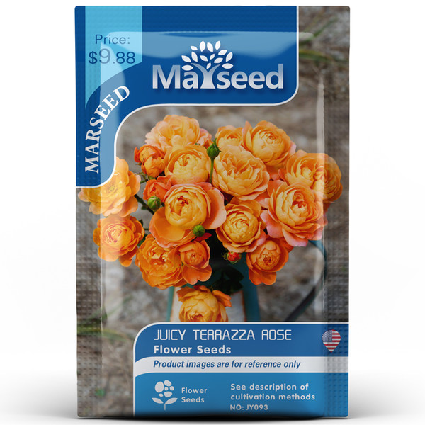 2019 Juicy Terrazza Rose Flower Seeds Pack Orange Rose Seed Home Garden Perennial Senior Bonsai Plant Wholesale From Flowerstory 1 11 Dhgate Com