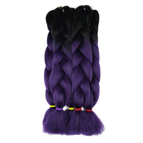 #1B/Purple