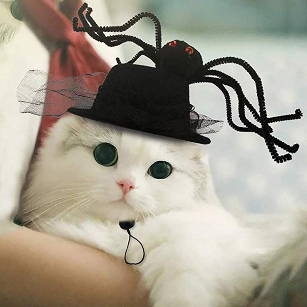 Halloween Pet Dog Cat divertente Spider Forma Copricapo Cappello fascia Costume Weekend Prop Halloween Party Xmas Bday sposa Parade