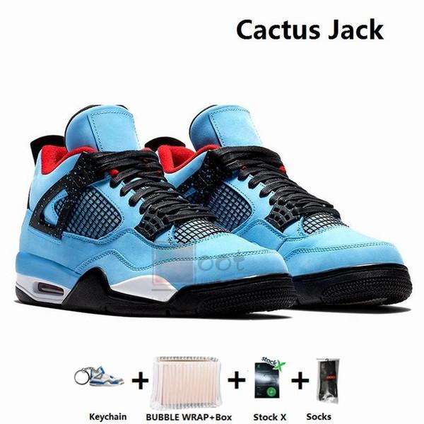 Jack -Cactus