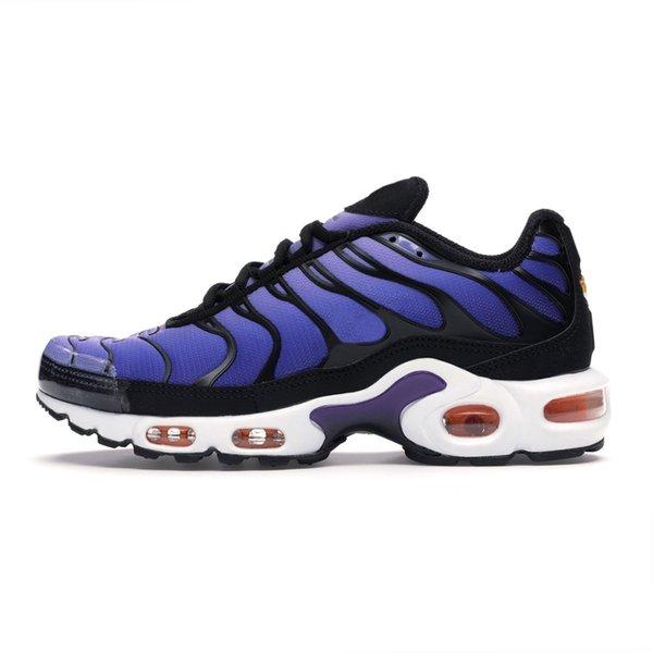 5 Voltage Purple
