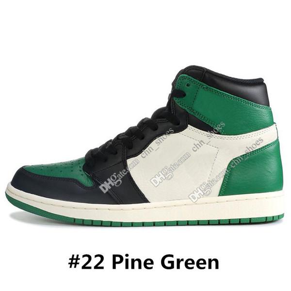 # 22 Pine Green